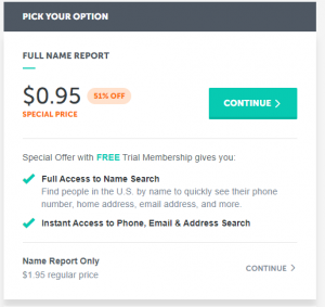 95 cents report billing screenshot